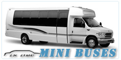Mini Bus rental in Detroit MI