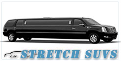 Wedding limousine in Detroit, MI