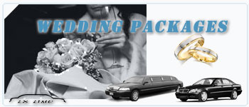 Detroit Wedding Limos